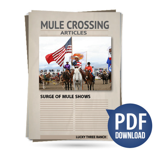 Surge of Mule Shows