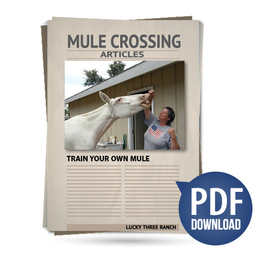 Train Your Own Mule