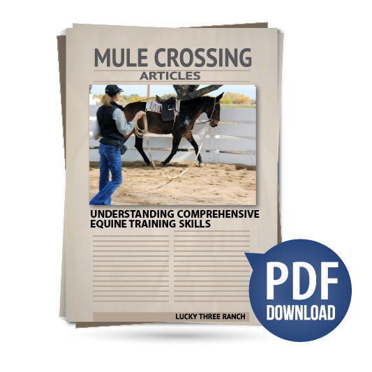 Understanding Comprehensive Equine Training Skills