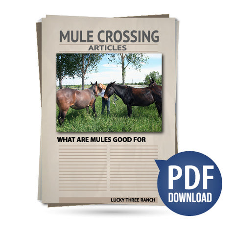 What Are Mules Good For
