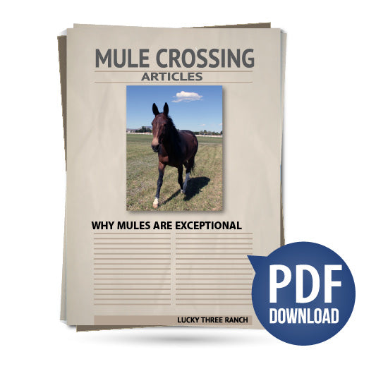 Why Mules Are Exceptional