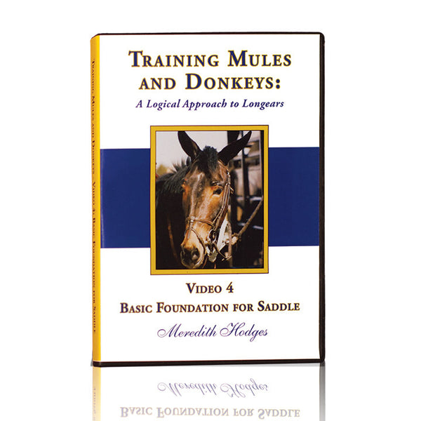 TMD DVD #4 - Basic Foundation for Saddle