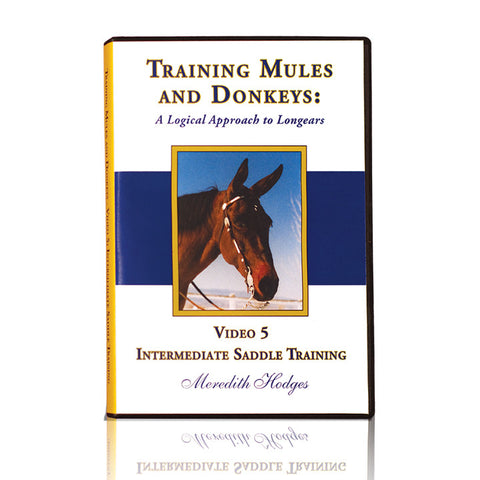 TMD DVD #5 - Intermediate Saddle Training