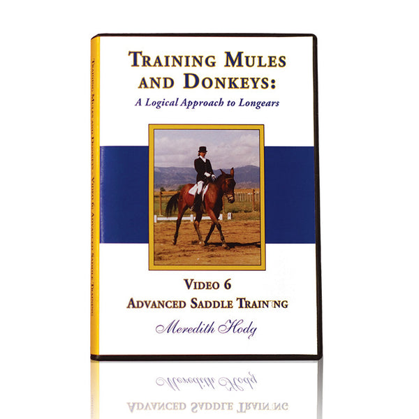 TMD DVD #6 - Advanced Saddle Training