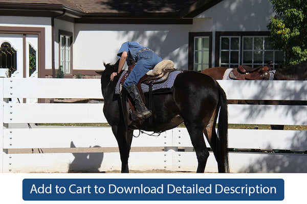 Training Tip - #069 Begin Riding With an Assistant in the Round Pen