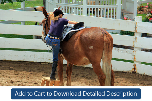 Training Tip - #070 Teaching Your Equine to Stand Still During Mounting