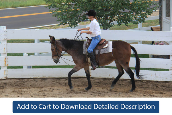 Training Tip - #072 Riding in the Round Pen Without an Assistant
