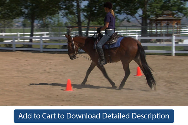 Training Tip - #075 Hourglass Pattern Under Saddle at the Walk and Trot