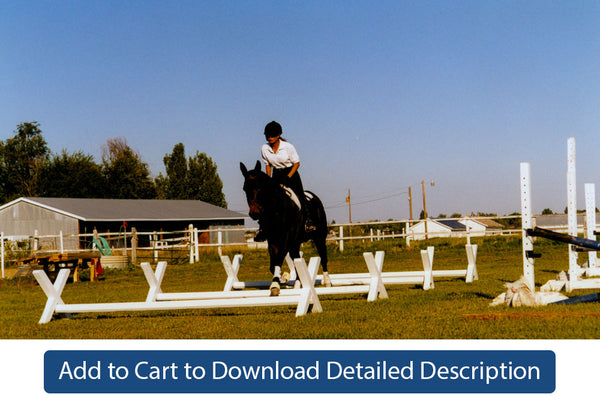 Training Tip - #100 Preliminary Cavaletti Jumping Exercises