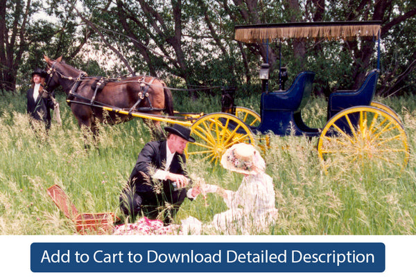 Training Tip - #113 Carts and Carriages