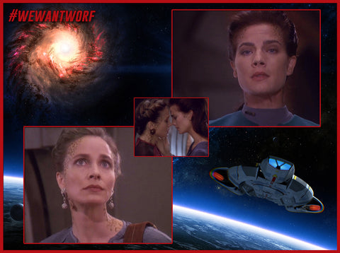 HARVEY MILK DAY STAR TREK DEEP SPACE NINE LGBT EPISODE STARRING TERRY FARRELL