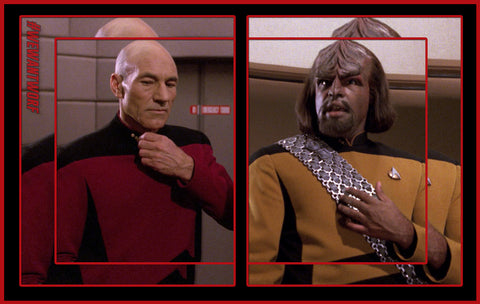 STAR TREK TNG WORF VS PICARD