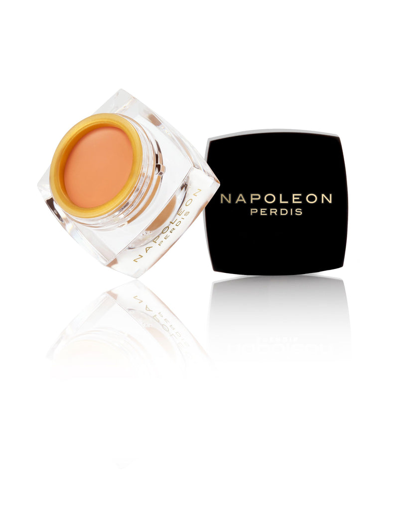 NAPOLEON PERDIS THE ONE CONCEALER