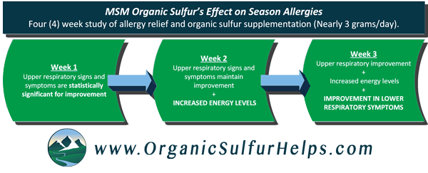 MSM Organic Sulfur provides allergy relief