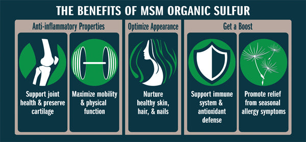 MSM Organic Sulfur benefits list