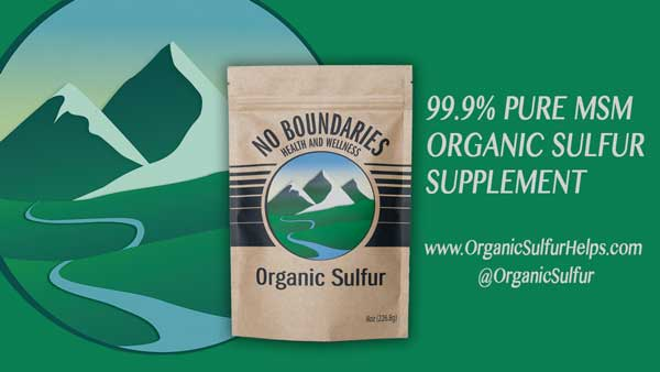 MSM Organic Sulfur From No Boundaries Health and Wellness