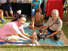 animal-communicators-hawaii-petwalk2015