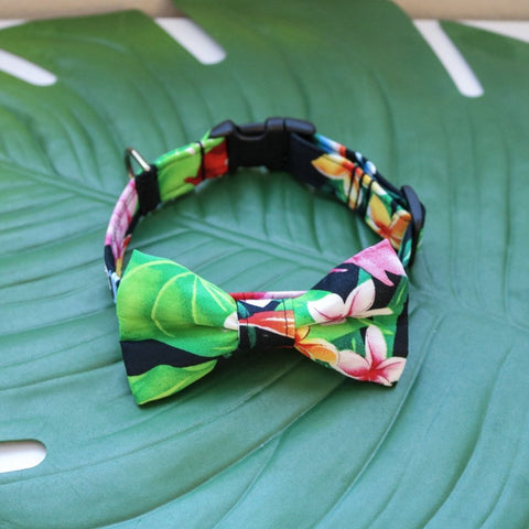 uluwehi-bow-tie-front
