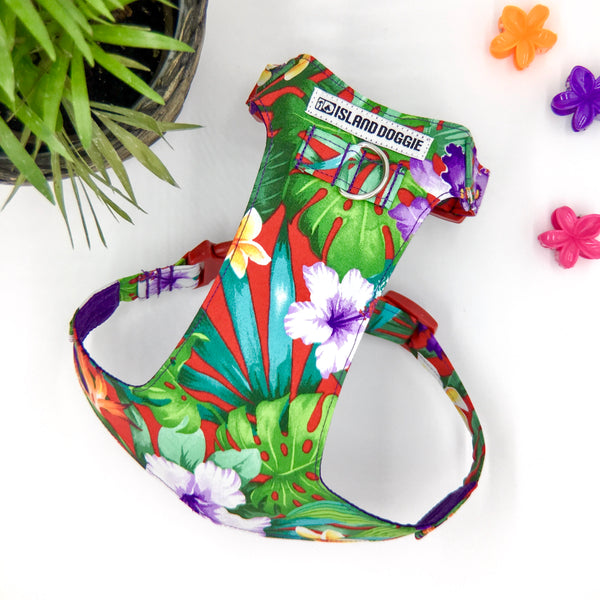 Purple Paradise Buckle Harness