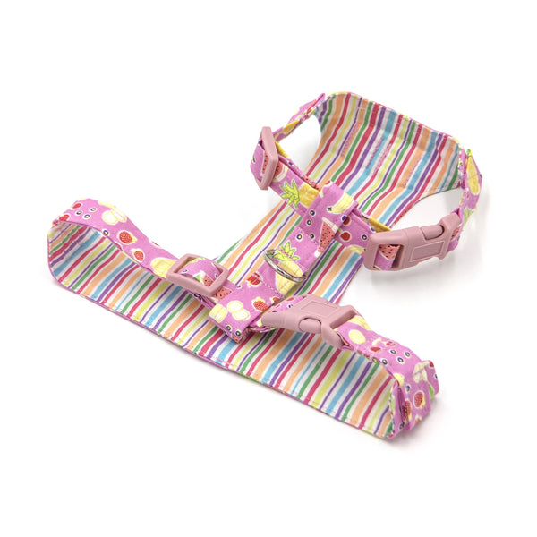 Tutti Fruity Buckle Harness