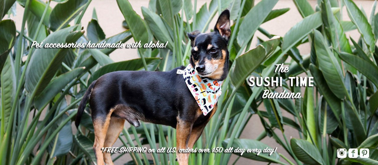 Sushi Time Reversible Bandana