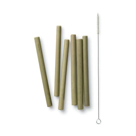 Bamboo Straws with Brush (6pk)