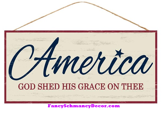 "12.5"" L X 6"" W America God Shed His Grace Sign"