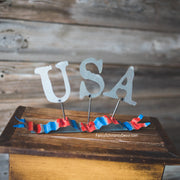 U.S.A.  Ribbon by The Round Top Collection A18008
