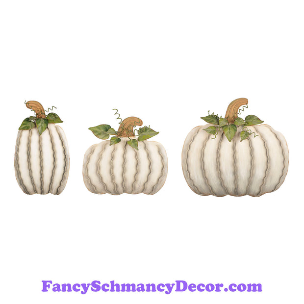 Cream Pumpkins Assorted Set of 3 by The Round Top Collection F19006