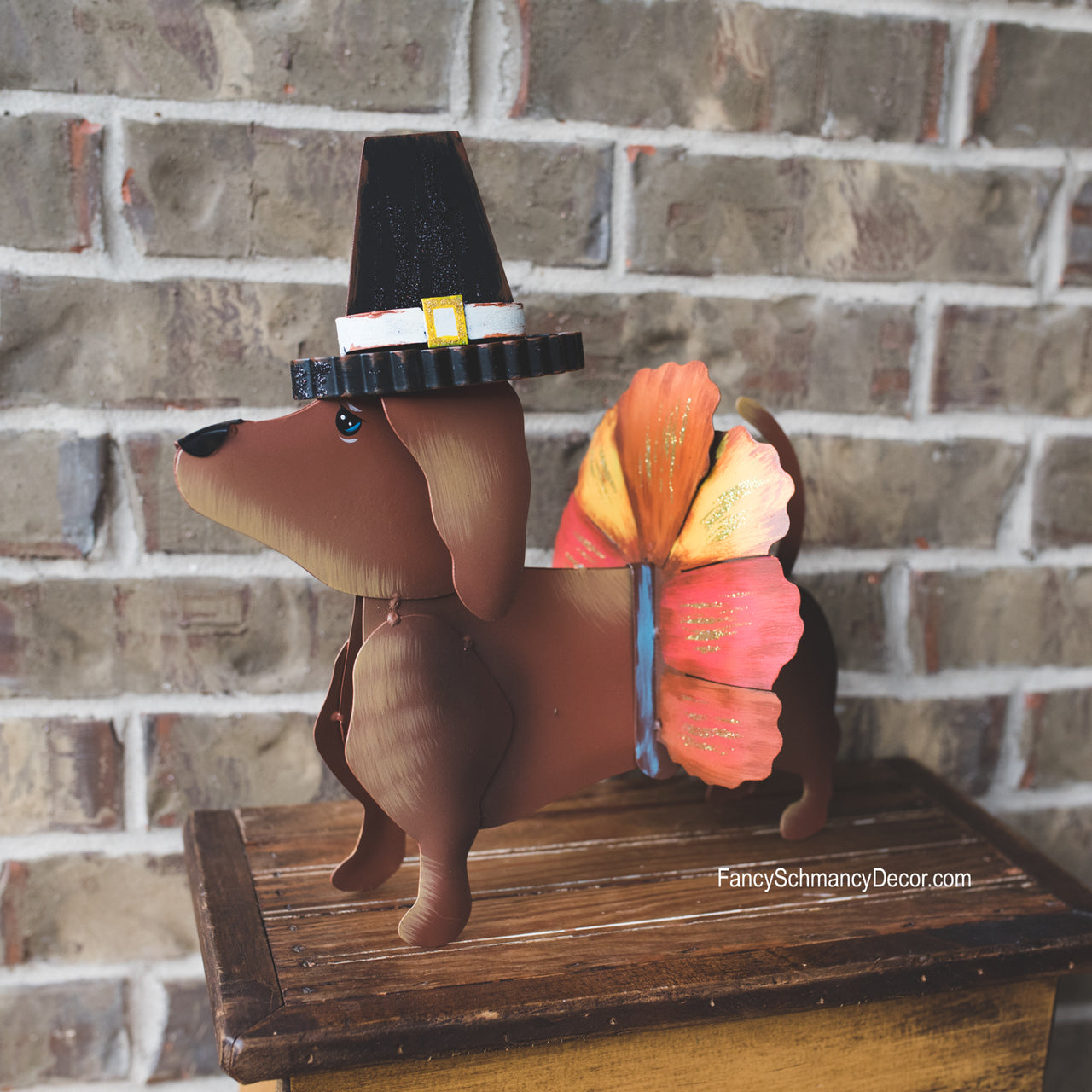 Dress-up Dachshund Pilgrim Turkey