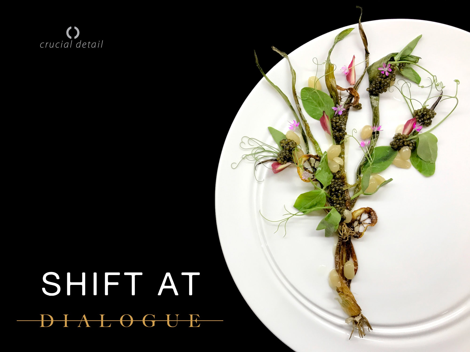 Chef's Perspective: The Shift Collection