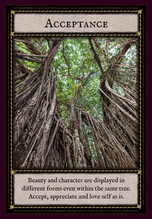 *Banyan Tree Wisdom Guidance Cards