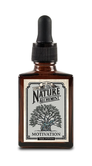 Tree Gift 'Motivation' 30 ml Potion - Pack of 4