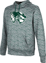 Load image into Gallery viewer, Utah Valley University: Boys' Pullover Hoodie - Brushed