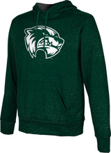 Load image into Gallery viewer, Utah Valley University: Men's Pullover Hoodie - Heathered