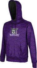 Load image into Gallery viewer, Weber State University: Boys' Pullover Hoodie - Brushed