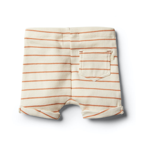 Stripe Short | Toasted Nut