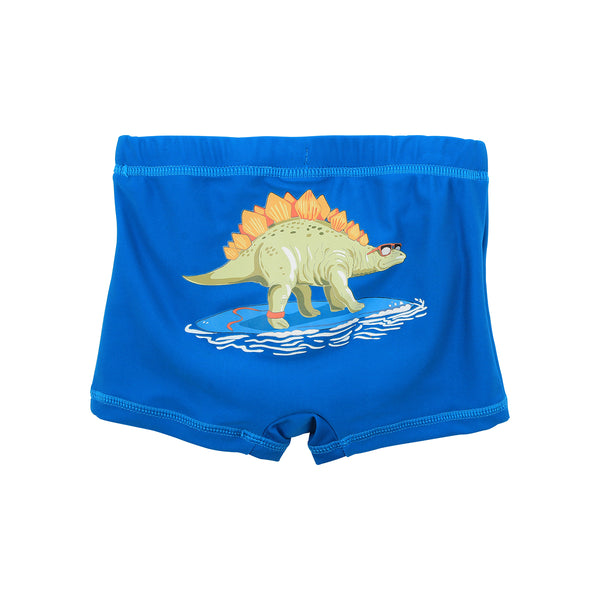 Arlo Swim Shorts | Blue