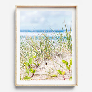 Beach Photography / Wall Art / Bach Print / Byron Bay