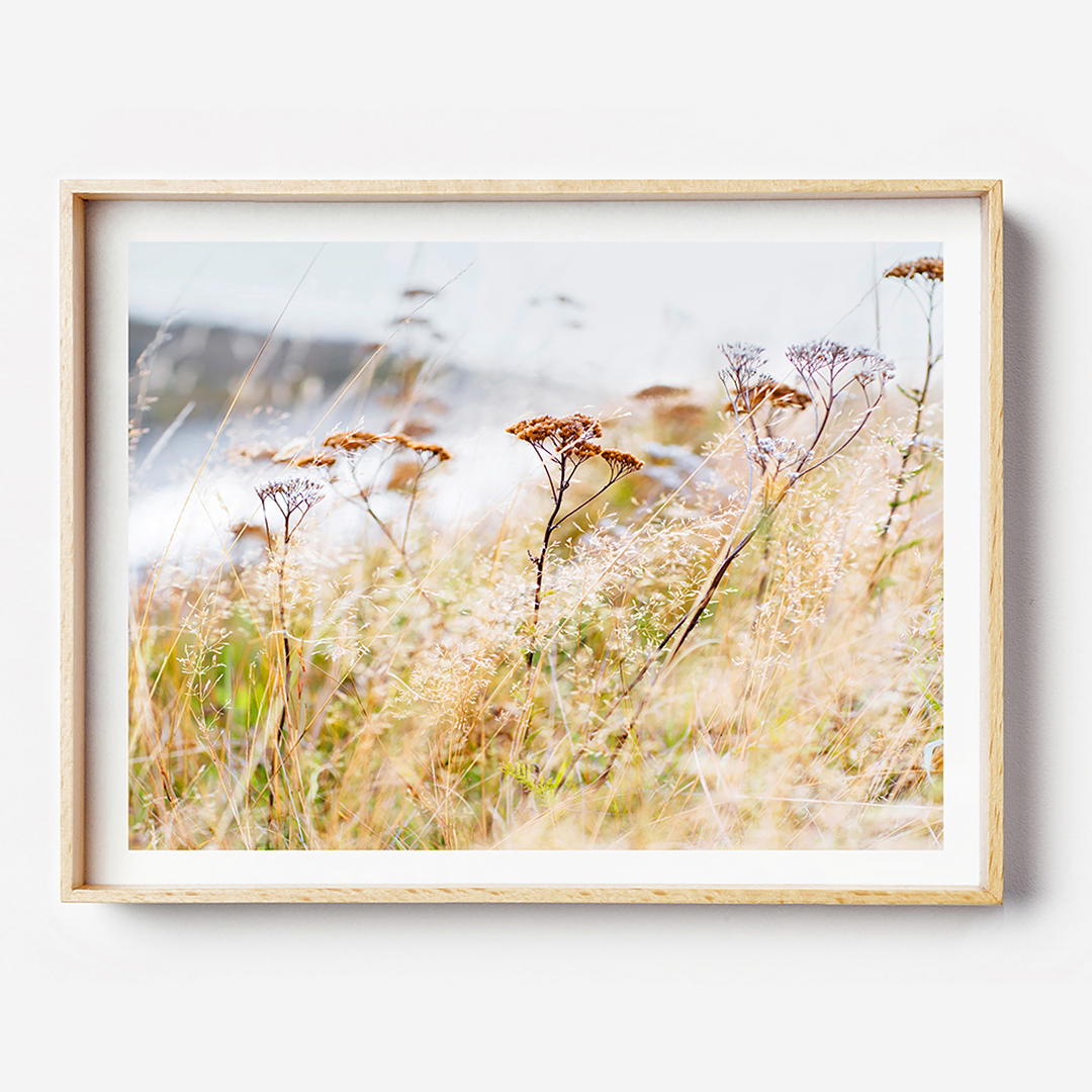 Beach Print / Coastal Print / Coastal home / New Zealand Photographic Print