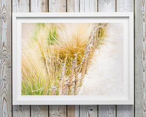 Photo Print / Beach Interior / Coastal Home Australia / Beach Art / Beachcomber Print