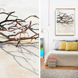 Beach Photography / Beach Print / Coastal Interior / Byron Bay