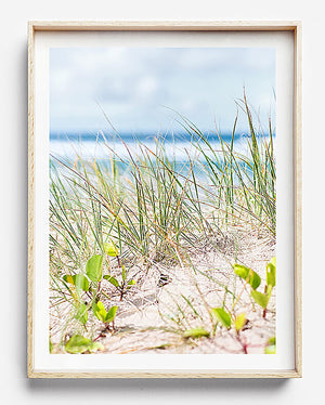 coastal interior sand dunes byron bay photography beach art beach print coastal print coastal home interior coastal print