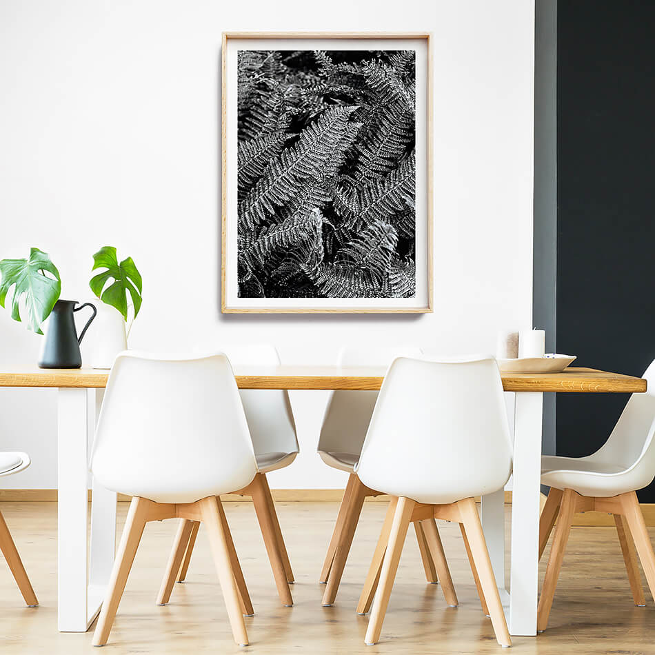 black and white interior black and white print leaves photo print abstract photo print of leaves and greenery photographic print of new zealand