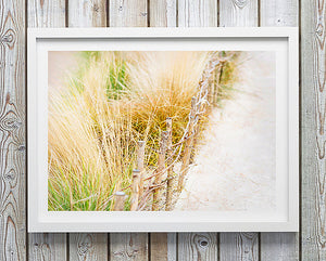 beach sand dunes artwork print limited edition fine art photography print was created in cornwall england artwork to purchase online for the home interior design documentary travel photographer photographic print photographic print shop brisbane beach print photographic prints for the home home decor wall art framed art prints brisbane