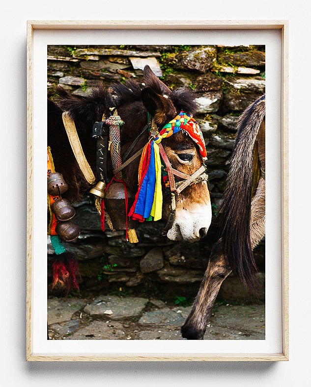 hiking in nepal colourful village limited edition fine art photography print was created in kathmandu pokhara nepal artwork to purchase online for the home interior design documentary travel photographer photographic print photographic print shop brisbane home decor wall art photographic prints for the home framed art prints brisbane