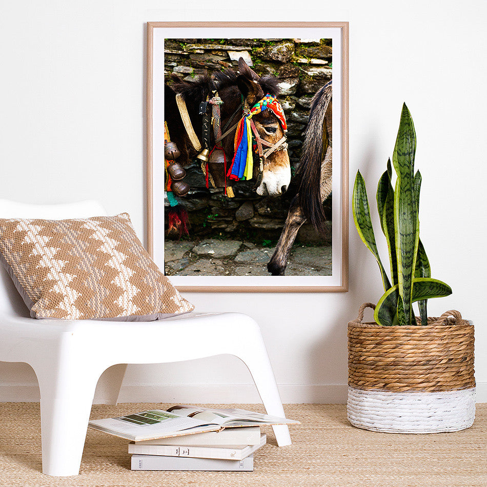 nepal photography photo print for wall nepalese artwork nepal asian home decor nepal homewares donkey