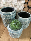 Set of three coral reef pots - Home Bee