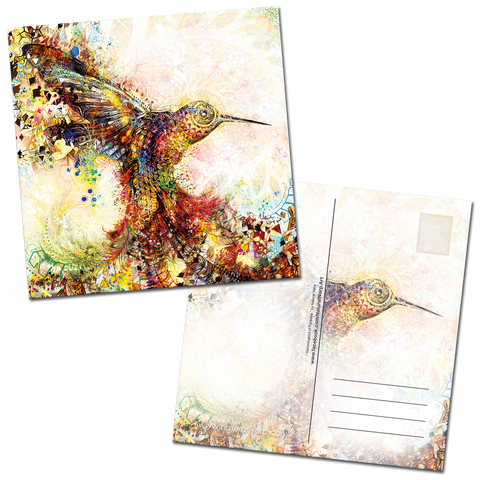 "Postcard Pack 2018 - "" Hummingbird of Paradise """