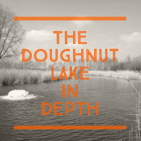 The Doughnut Lake in Depth